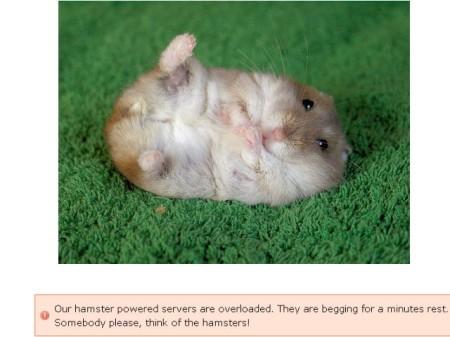 """""""Nosso servidor movido a Hamsters está sobrecarregado.     Eles estão implorando uns minutos de descanso. Alguém por favor, pense nos hamsters!"""""""
